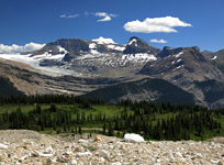 The Daly Glacier, Mt. Daly and Mt. Niles from the Iceline Trail